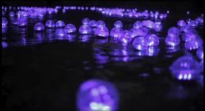 Coloumbia River Balls