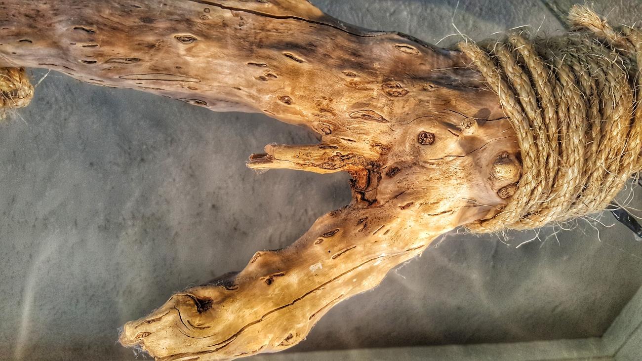 Driftwood and Ball jar light, detail (custom)--JScottMcElroy.com